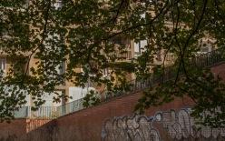 Jenny Park Hill 1